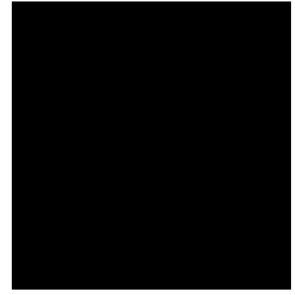 A-1 Logo SM