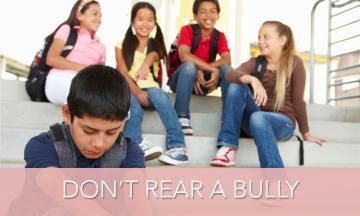 MH_Bully