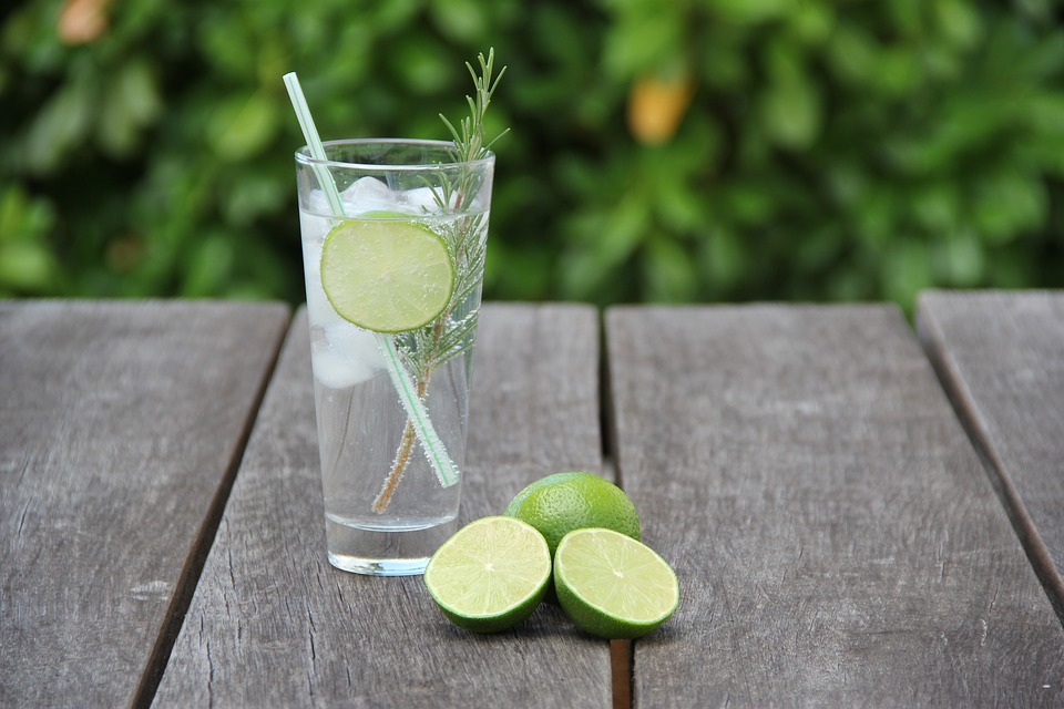 Lime Lemon Drink Alcohol Tonic Cocktail Gin