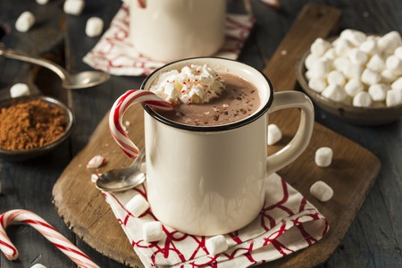 33727427 - homemade peppermint hot chocolate with whipped cream
