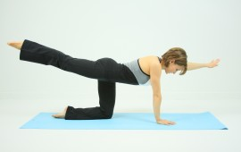 Kneeling bird dog back exercise - featured